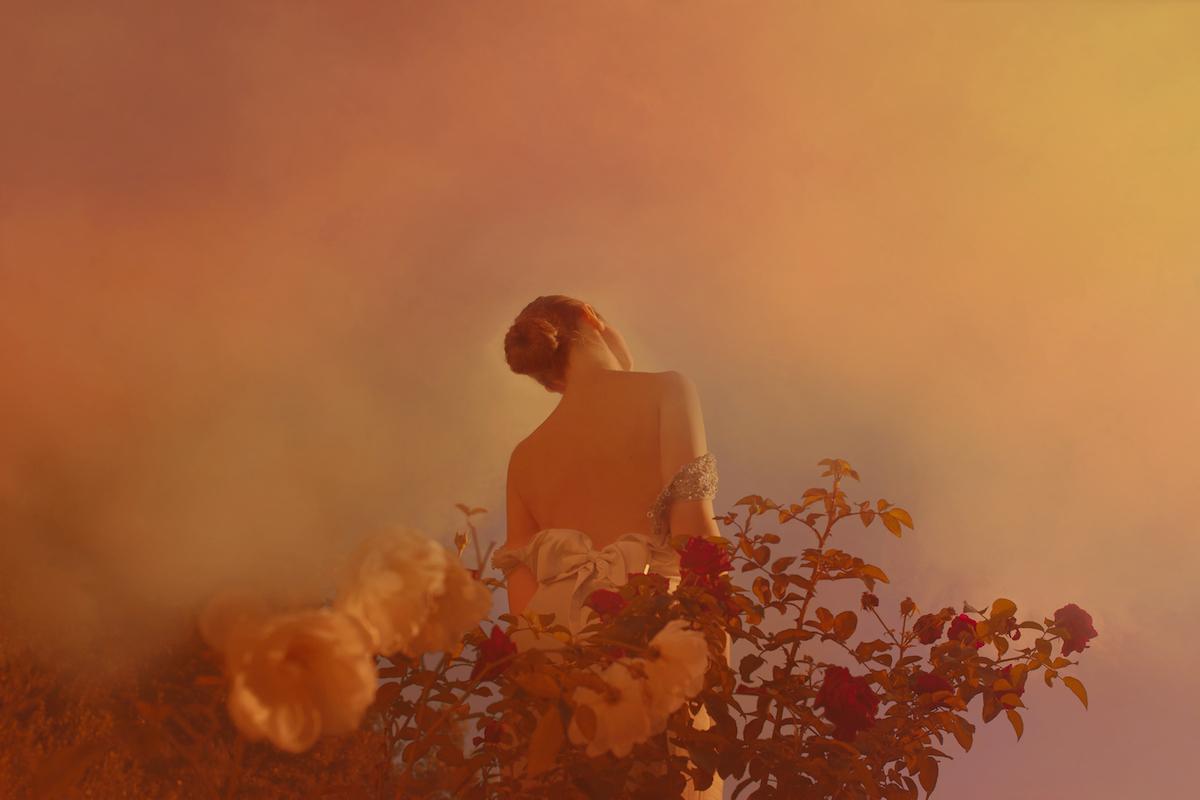 Anna Di Prospero - Le rose, stampa inkjet fine art 100x67 cm Edizione di 6 + 2 P